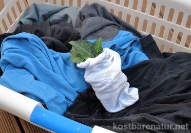 Wäsche waschen mit Efeu-Blättern – so einfach geht's