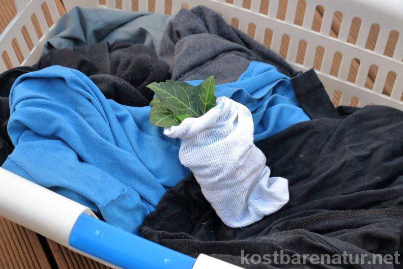 Efeu ist eine der Pflanzen, die schon im Altertum zum Wäschewaschen genutzt wurden. Auch heute kannst du Efeu-Blätter als ökologisches Waschmittel verwenden