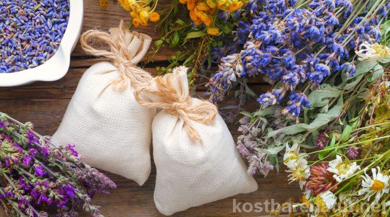 Kräuter wurden schon vor vielen Jahren in Kissen und Matratzen gestopft. Heute kannst du ihre Kräfte gezielt in Duftkissen einsetzen.