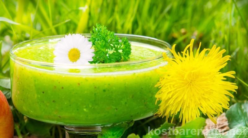 Die Tage werden wieder länger und wir freuen uns auf den Frühling. Nutze diese Wildpflanzen in deiner Frühjahrskur, um Körper und Geist fit zu machen!