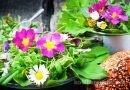 7 wilde Pflanzen im Vorfrühling sammeln
