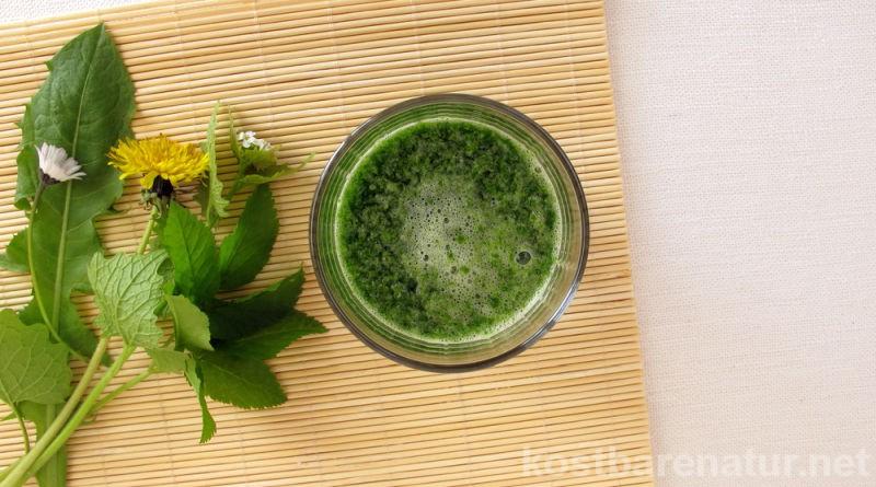 Mit grünen Smoothies kann man leicht und lecker den Anteil an grünem Gemüse in der täglichen Ernährung erhöhen. Wildkräutern machen sie noch viel gesünder!