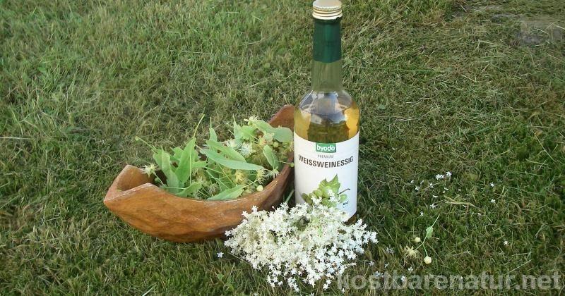 Ein Blütenessig mit Linden- und Holunderblüten bringt Frische in die Salatsauce und ist unglaublich gesund!