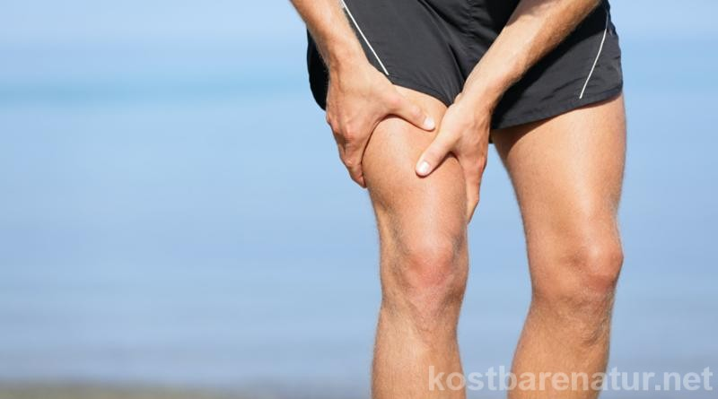 Neben Massagen, Dehn- und Entspannungsübungen können auch Wildkräuter bei Muskelkater helfen. Diese Wildkräutertinktur lässt den Schmerz schnell abklingen