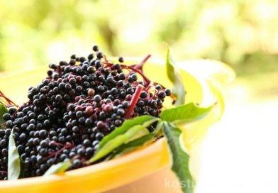5 Leckere Rezepte für Holunderbeeren