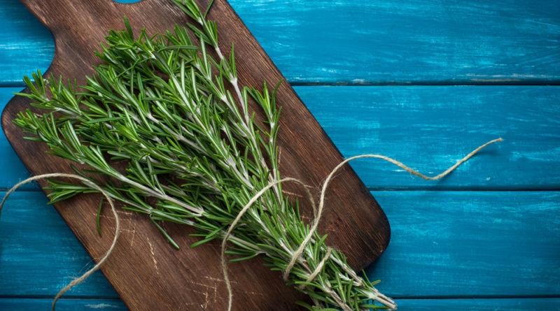 Je nach Kultur und Legende steht Rosmarin für die Liebe oder den Tod. Verwende das mediterrane Küchenkraut im Badezusatz, Salben und viel mehr!