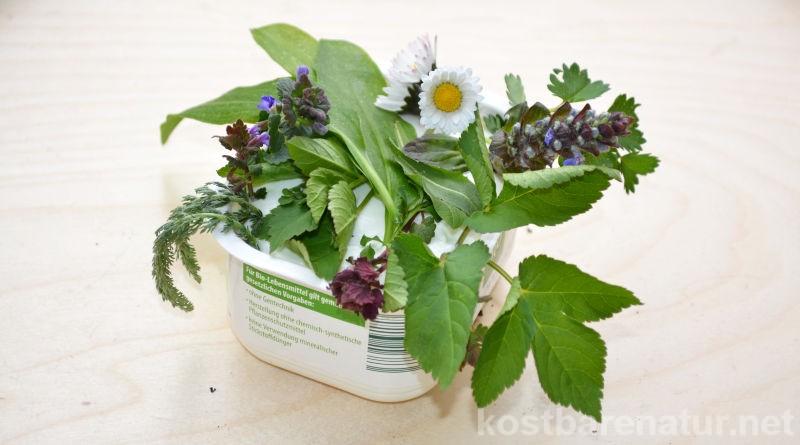 Dieser Frühlingsquark mit Wildkräutern schmeckt köstlich und versorgt dich mit wichtigen Vitaminen und Vitalstoffen!
