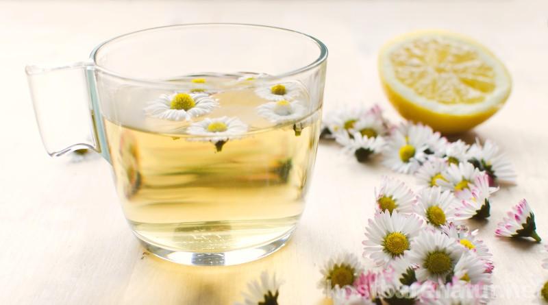 Jeder kennt es und jeder liebt es! Das kleine Gänseblümchen wächst das ganze Jahr über auf fast jeder Wiese und weckt aufgebrüht als Tee wahre Superkräfte.