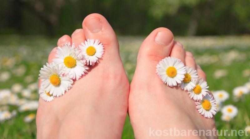 Unsere Füße tragen uns durchs ganze Leben und müssen viel verkraften. Mit diesen Wildpflanzen Pflegen und helfen bei Warzen, Schweißfüßen und viel mehr.