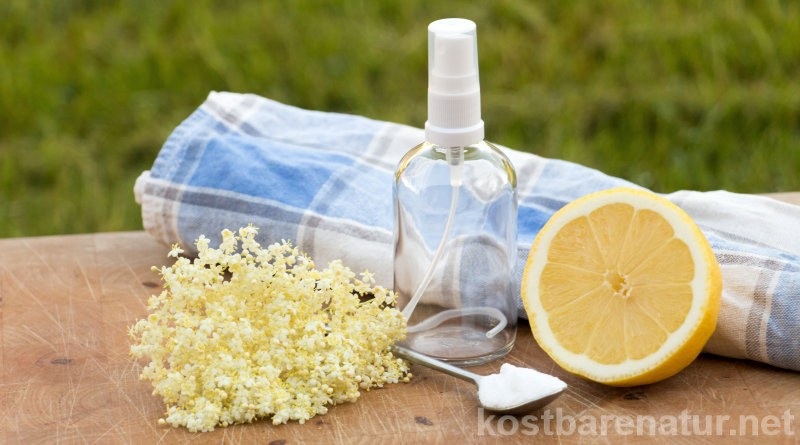 Aus natürlichen Zutaten wie Holunderblüten kannst du dir schnell und einfach ein wohlriechendes und gesundes Deo herstellen.