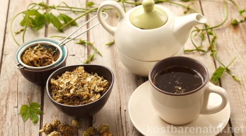 Wenn das Abstellen schwer fällt kann ein einfacher Tee aus diesen Wild- und Heilpflanzen helfen.