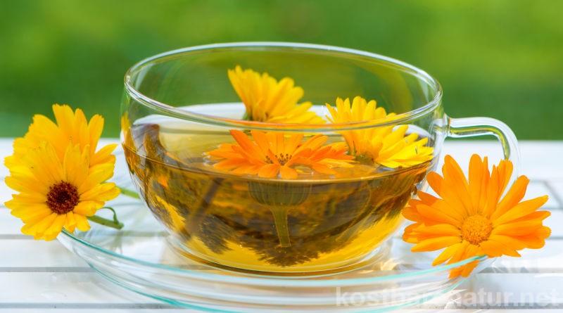 Nutze die Kraft der schönen und heilenden Ringelblume als Tee für deine Gesundheit, um z. B. Hautprobleme, Magenbeschwerden und Sodbrennen zu lindern.
