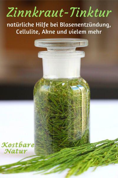 Das vermeintliche Unkraut Ackerschachtelhalm hat viele heilende Eigenschaften und kann z.B. bei Cellulite, Blasenentzündung und Akne helfen.