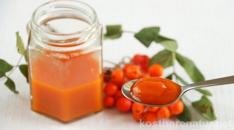 Die roten Beeren der Eberesche sind nicht nur Vogelfutter! Du kannst dir die gesunden Beeren zum Beispiel als Mus für deine Gesundheit zunutze machen.