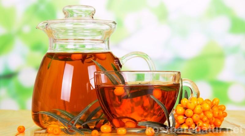 Die Vitamin C-Bombe Sanddorn ist der ideale Begleiter in der kalten Jahreszeit. Nutze seine Kraft in einem aromatischen und gesunden Tee.