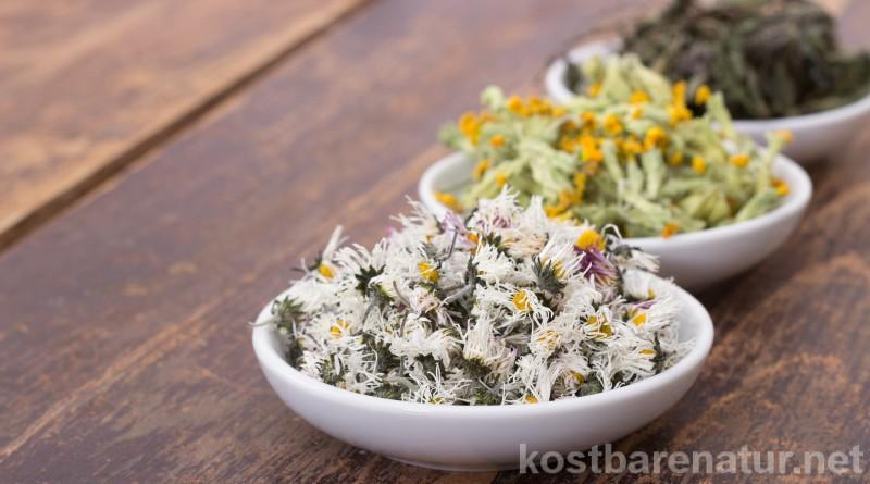 Tees können quälende Hustenbeschwerden wirksam lindern. Diese Heilkräuter helfen bei der Genesung.