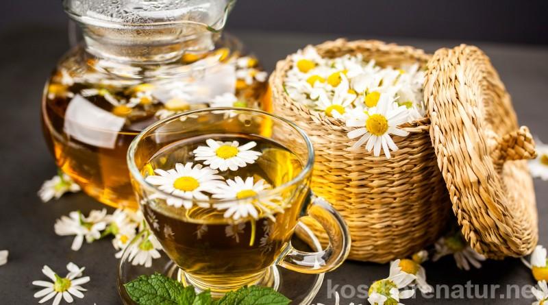Die Kamille ist eine der beliebtesten Teepflanzen und das nicht ohne Grund denn sie hat eine Vielzahl an heilenden Eigenschaften. Wie du sie selber sammelst und was sie alles kann, erfährst du hier.