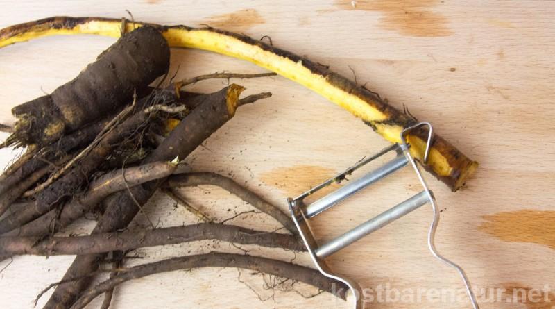 Mit diesen Rezept kannst du gesunde Klettenwurzeln schmackhaft zubereiten und ihre Heilkräfte im Winter nutzen.