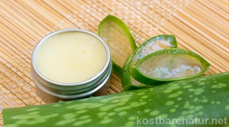 Das Gel der Aloe vera besitzt zahlreiche heilende Eigenschaften, die du dir auf vielfältigste Weise zunutze machen kannst!