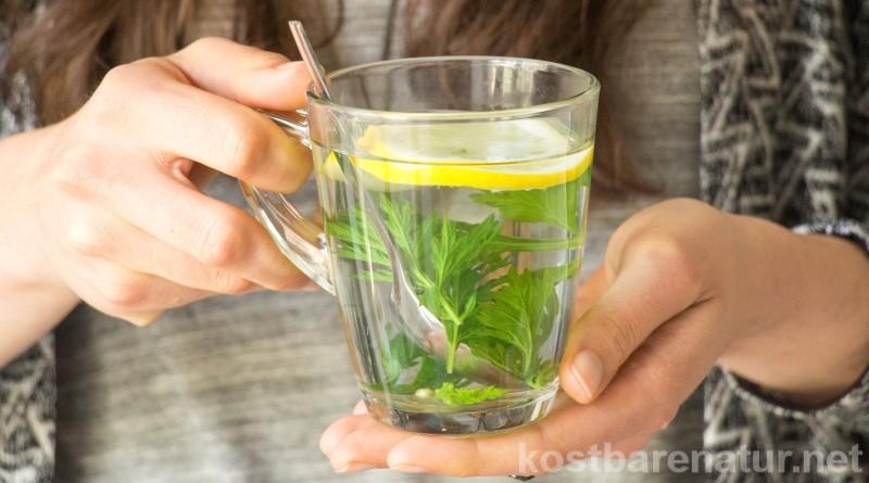 Beifuß ist ein starkes und wirksames Heilkraut, welches zahlreiche Frauenleiden lindern kann. Wie du einen heilkräftigen Tee zubereitest und was dieser alles kann, erfährst du hier.