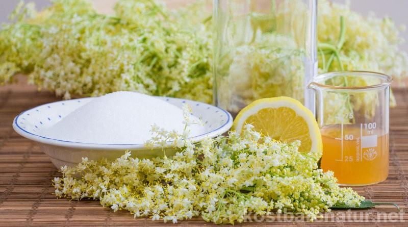 Die aromatisch, lieblichen Blüten des Holunders sind eine beliebte Zutat in Süßspeisen und Getränken. Probiere doch mal sie zu einem erfrischend-prickelnden Sekt zu verarbeiten!