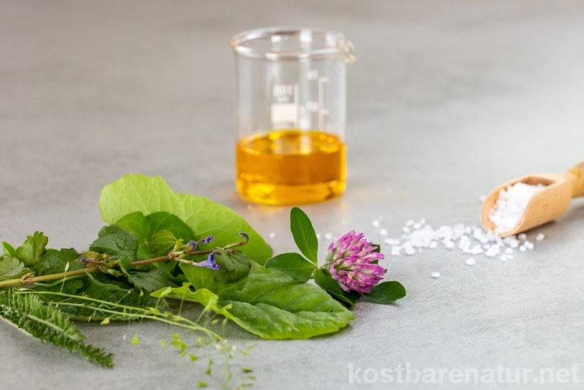 Eine Wildkräuter-Würzpaste selber zu machen, ist kinderleicht! So kannst du die gesunden, saisonal wachsenden Kräuter das ganze Jahr über genießen.