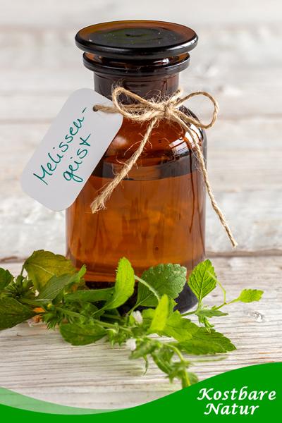 Melissengeist lindert Schlafstörungen, Unruhe Magen-Darm-Beschwerden und Erkältungsbeschwerden. Mit diesen Heilpflanzen kannst du ihn selbst herstellen.