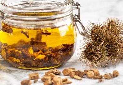 Klettenwurzelöl selber machen: gesund für Haut und Haar