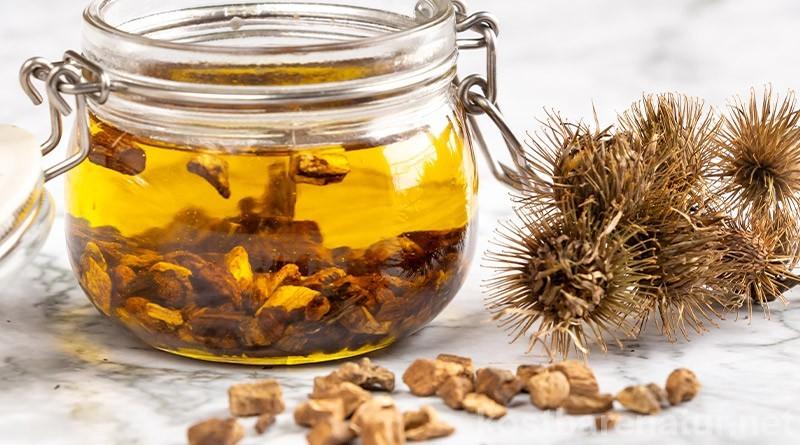 Die Klette ist eine Heilpflanze, die an Wegrändern zu finden ist. Aus ihrer Wurzel lässt sich ein Klettenwurzelöl selber machen, das Haar und Haut pflegt.