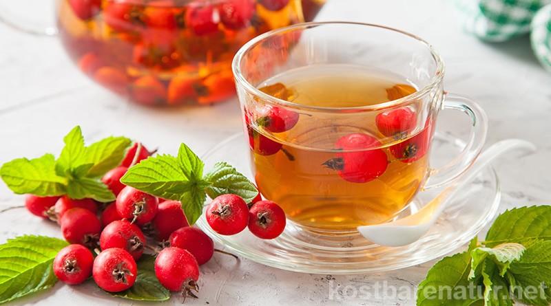 Un extract de ceai cu păducel poate fi făcut din frunze, flori și fructe.  Susține funcția inimii, are un efect de întărire și reglează tensiunea arterială.