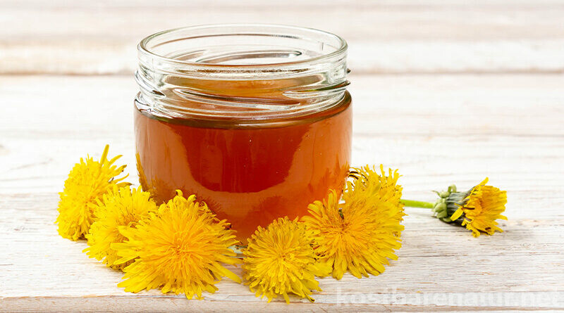 Löwenzahnhonig lässt sich sehr einfach zubereiten und stellt eine aromatische, vegane Alternative zu Bienenhonig dar.