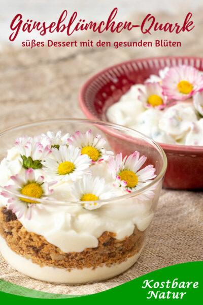 Süßer Gänseblümchen-Quark ist schnell und einfach zubereitet und eine köstliche Möglichkeit, die gesunden Blüten abwechslungsreich zu verwenden.