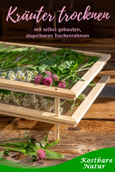 Wer Pilze, Beeren und Kräuter trocknen möchte, kann mit dieser Anleitung einen stapelbaren Kräutertrockner  selber bauen.